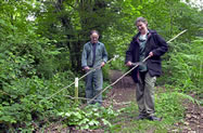 Coppicing crafts